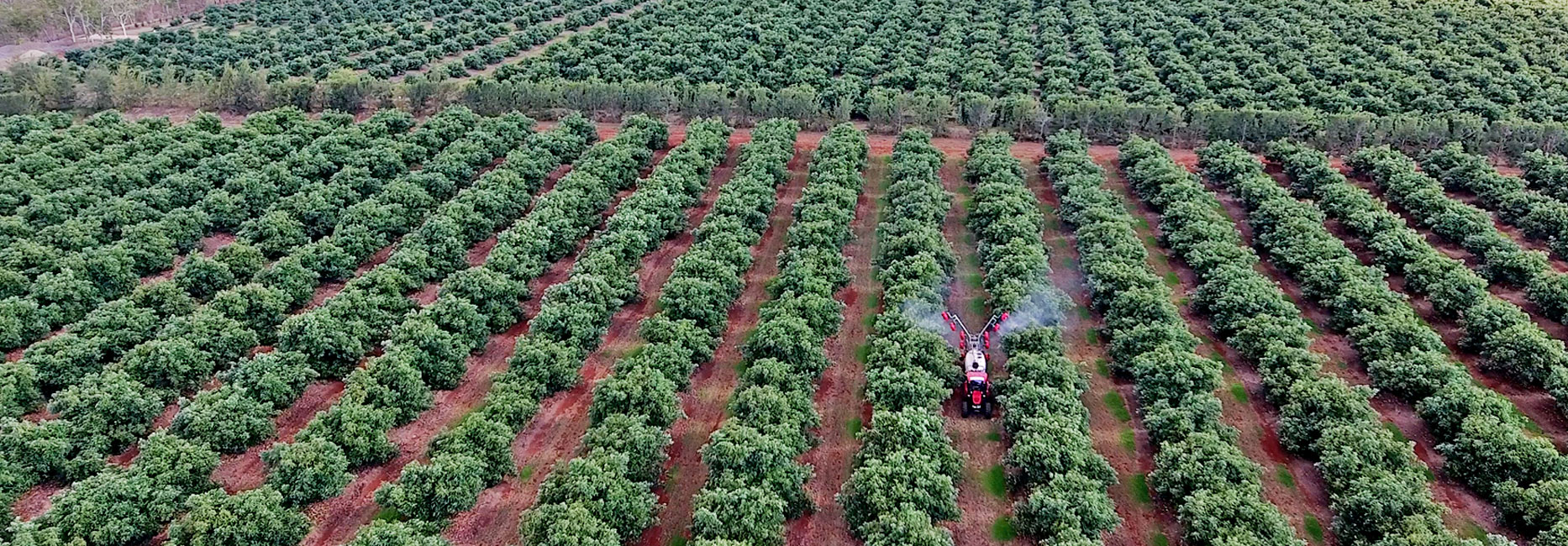 Spray Diary Schedule Agriculture Horticulture Farm Spray Schedule Drone Imagery Farm app Manage Farm Farm Spray Schedule and Diary spray Diary